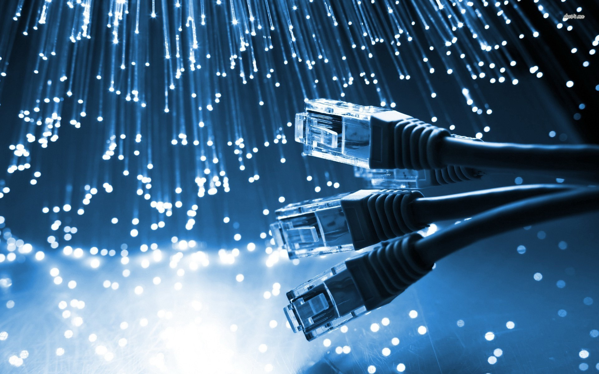 سئو کار -شبکه در تبریز-پشتیبانی شبکه در تبریز-رایارهام